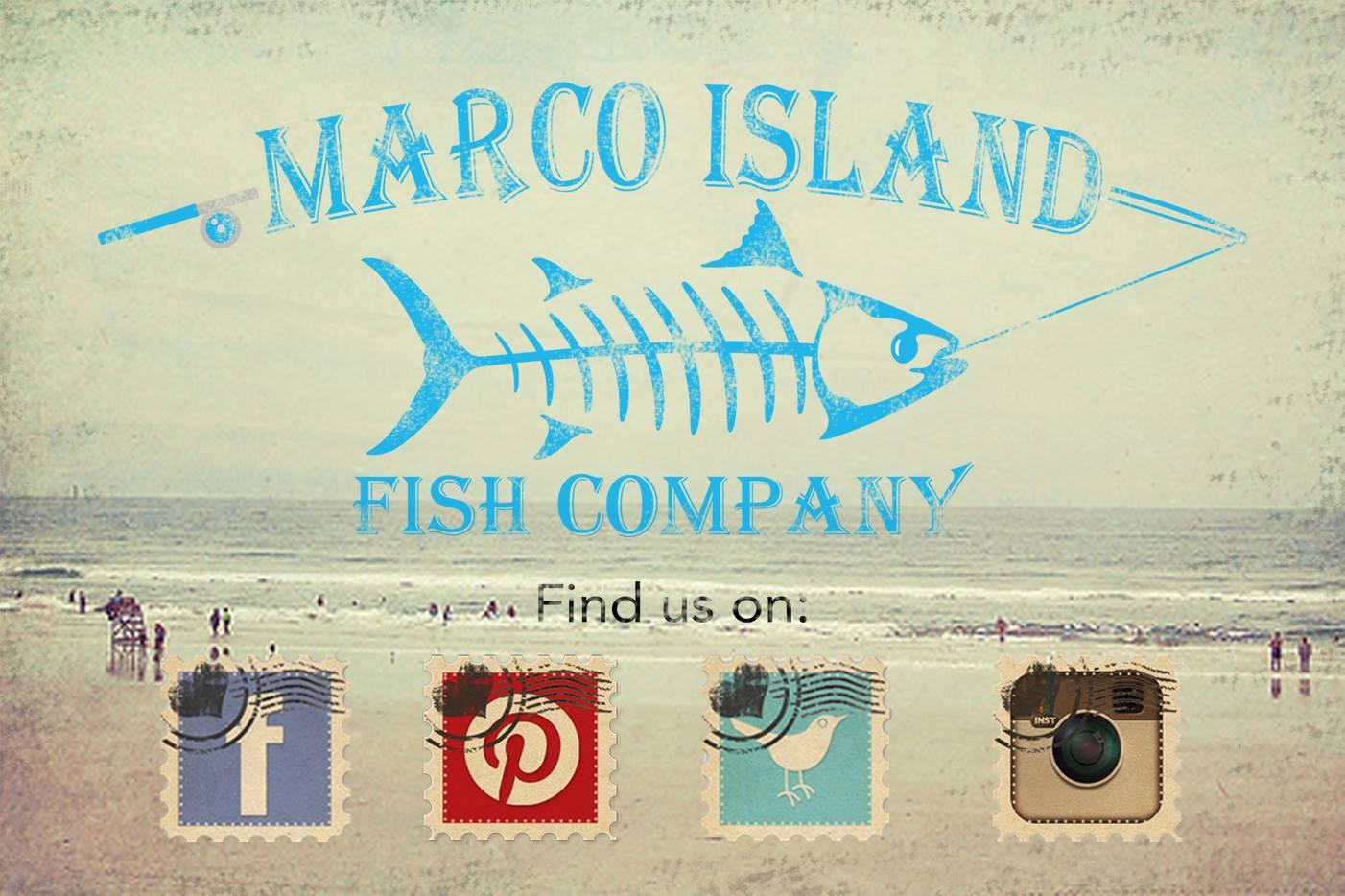 Marco island fish company naples marco island everglades for Island fish company