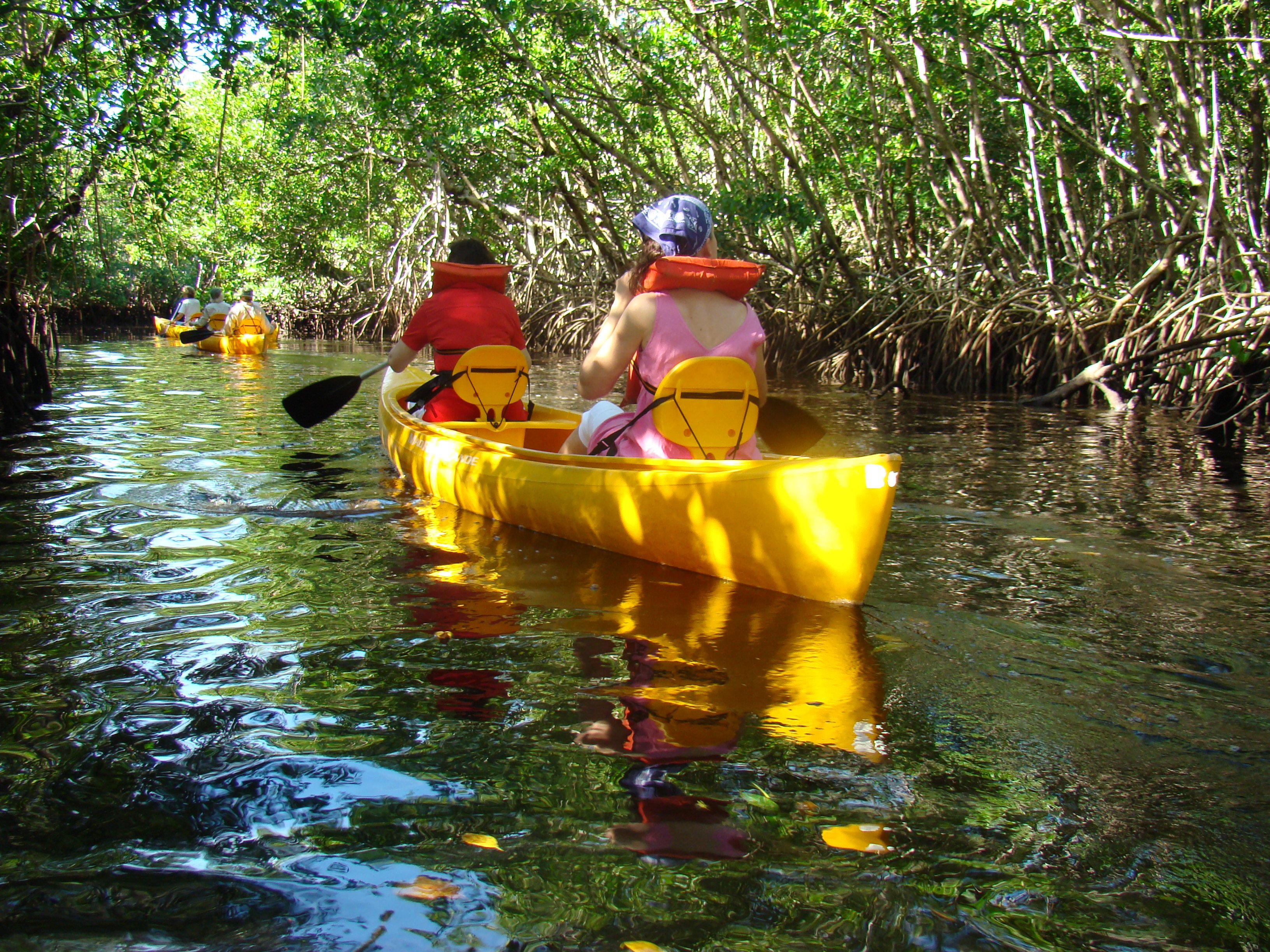 Paradise Adventures Big Island Kayak Tour