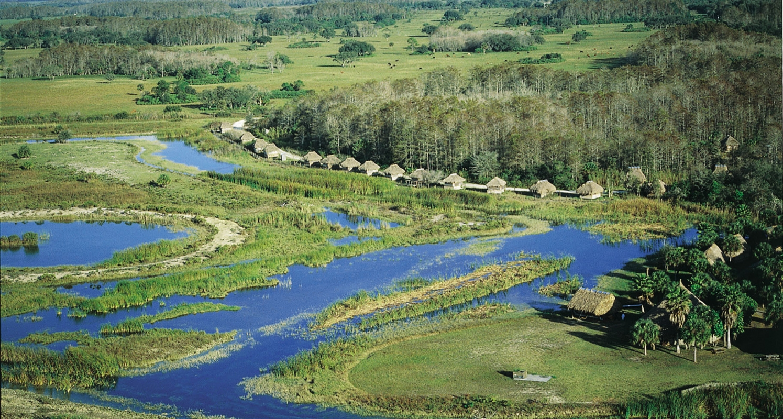 Billie Swamp Safari Airboat Trail