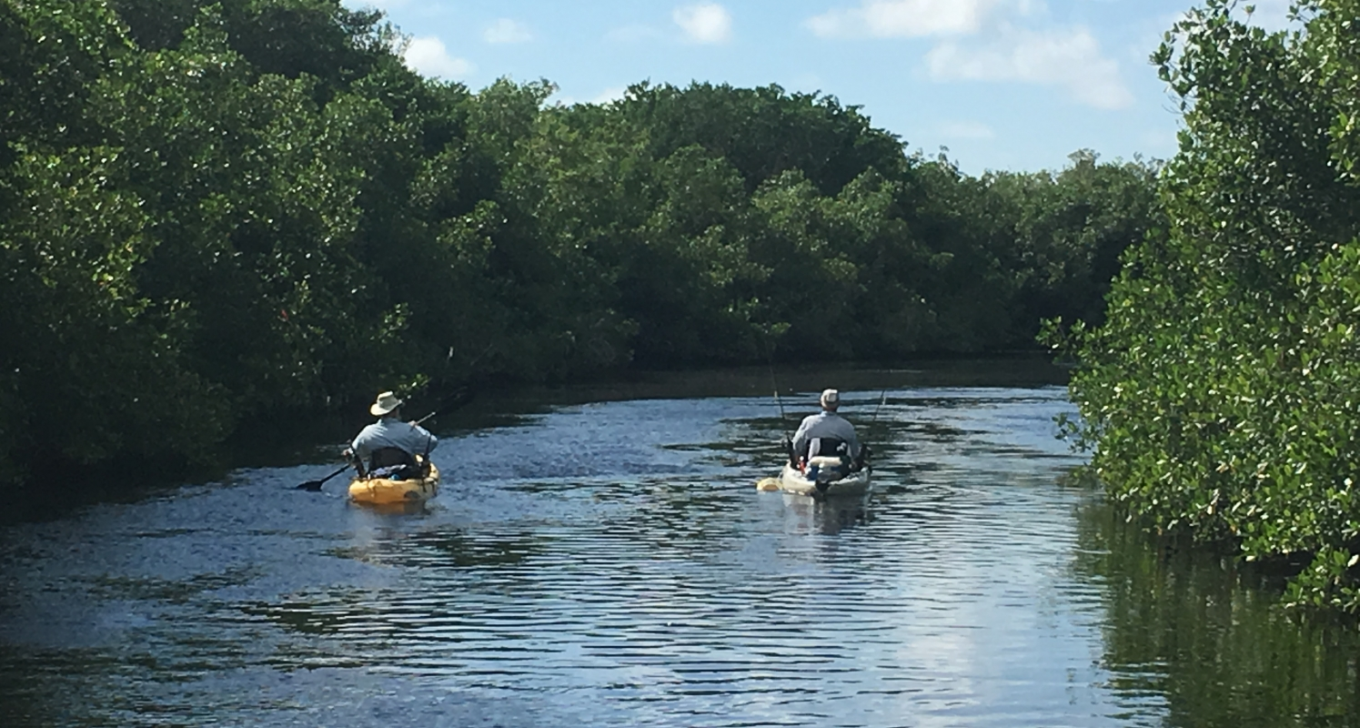 Kayaking to the entrance of one of the mangrove tunnels