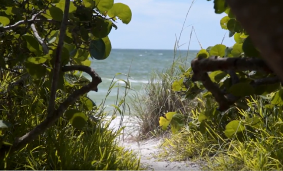 Eco tourism destinations in Florida