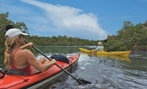 Paradise Coast Blueway | Naples, Marco Island & Everglades