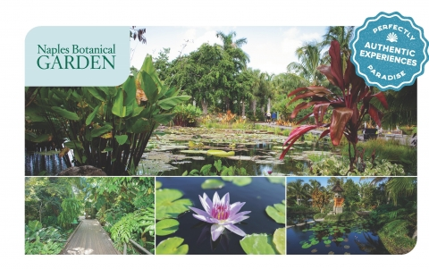 Experience the celebrated Naples Botanical Garden