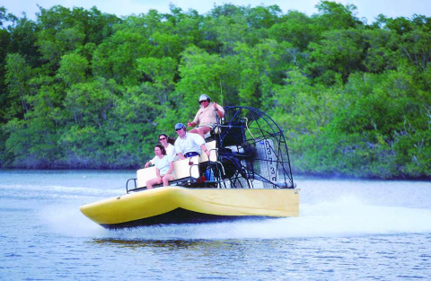 An airboat operator takes a tour group on a wild ride through mangroves and marsh grass near Everglades City.