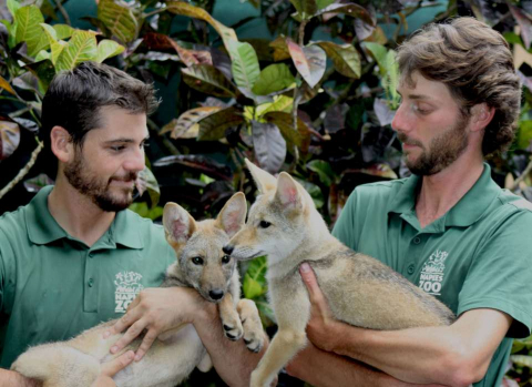 Naples Zoo promotes conservation during its daily Safari Canyon shows and at Meet the Keeper talks at each animal's habitat. <>