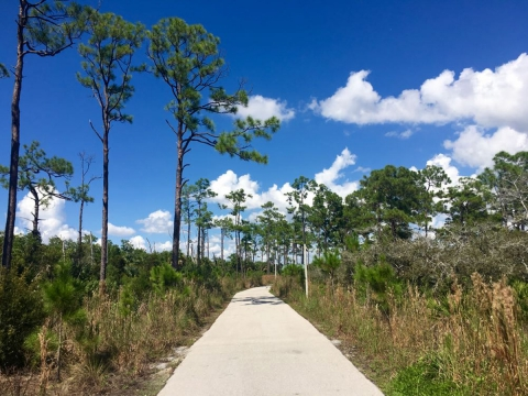 Gordon River Greenway Trail