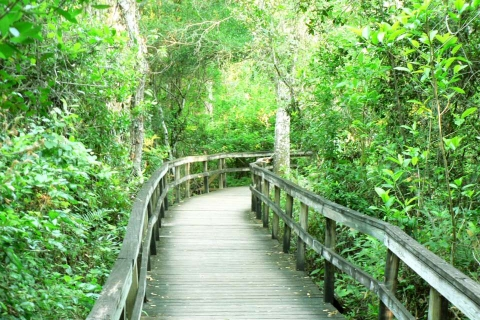 Get Easy Access to Nature With Trails, Boardwalks and Viewing Areas