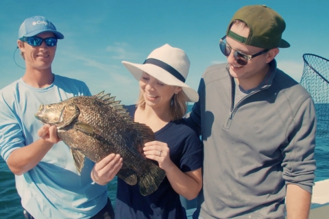 How to Catch a Tripletail in 5 Minutes