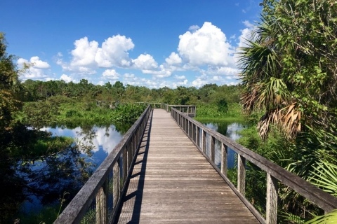 Explore the boardwalk at Freedom Park