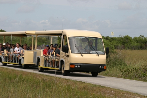 Guided tour on eco-friendly tram