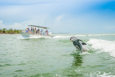 Dolphin Watch Ecotour, Ten Thousand Islands