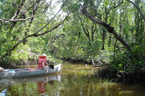 Canoes can be rented or bring your own to explore this area of the park