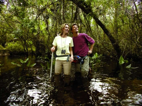 Swamp Walks & Paddling Trails in the Naples Area
