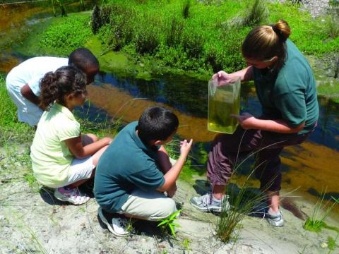 Naples Children's Programs Pass on Respect for Nature