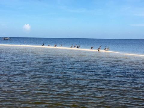 Wellness retreat in the Florida Everglades
