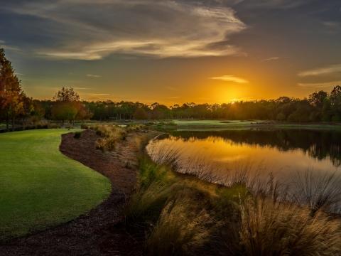 Golf on Florida's Paradise Coast