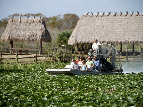 Glide through the swamp on an Airboat at Billie Swamp Safari.