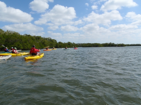 Guided Boat and Kayak Tours
