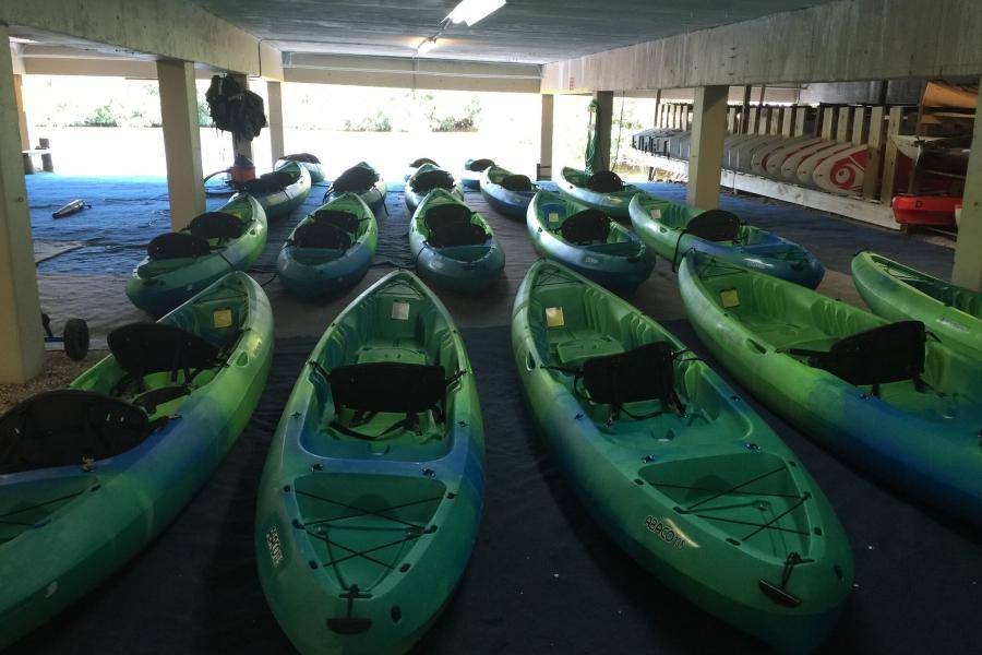 Kayak Rentals and Tours