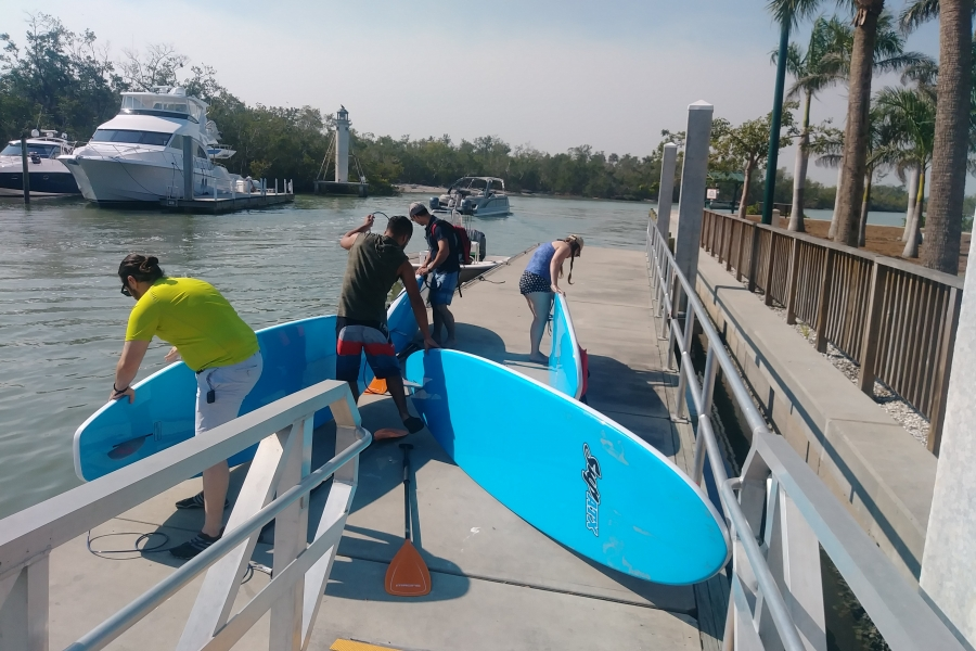 Half day paddleboard adventure eco tour , keewayding