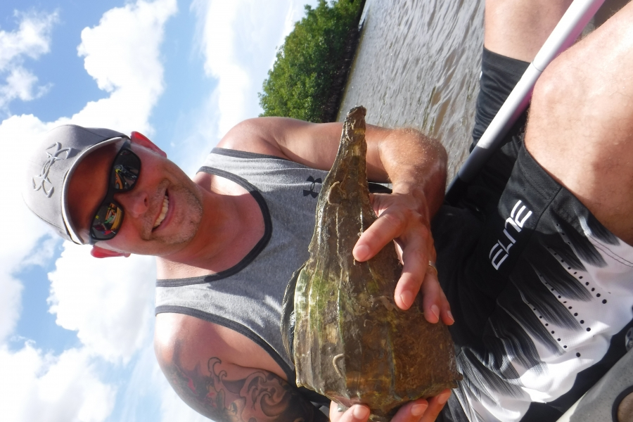 Giant Lightning Whelk found on one of our biologist led kayak adventures!
