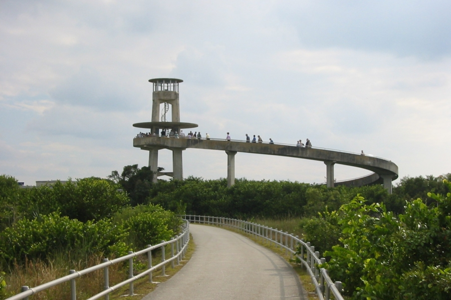 Shark Valley Observation Tower