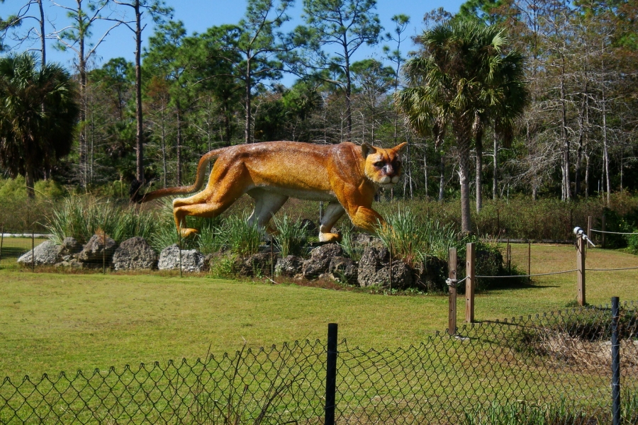 Florida panther statue outside Trail Lakes Campground