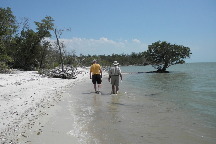 Exploring the shoreline