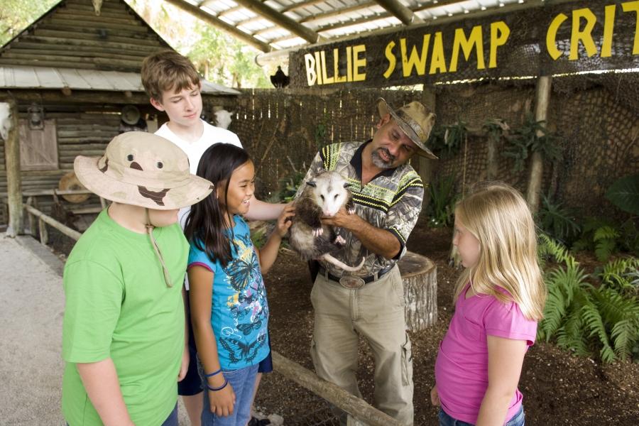 Swamp Critter Show
