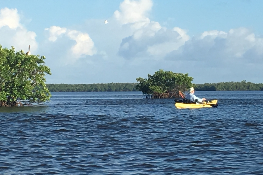 Kayaking around one of 10,000 mangrove islands!