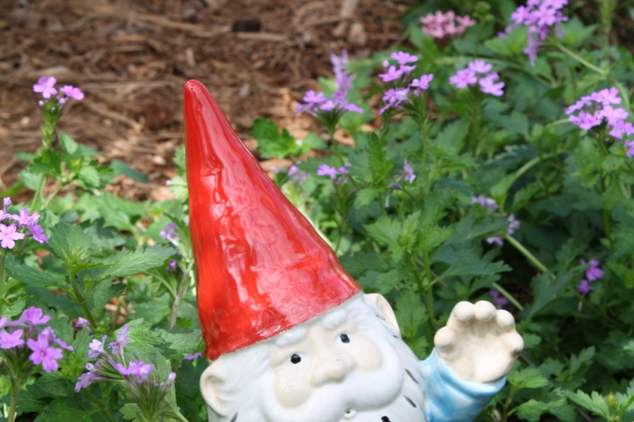 Gnomes in the Children's Garden - Fun Annual Event in February