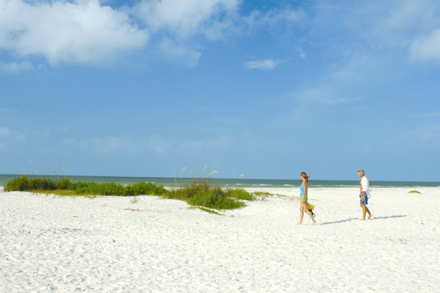 Explore the wide stretches of nearly deserted white sand beach on Keewaydin Island.