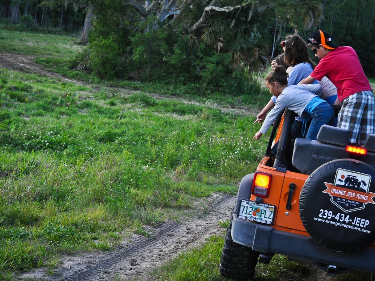 Orange Jeep Tours eco-safaris