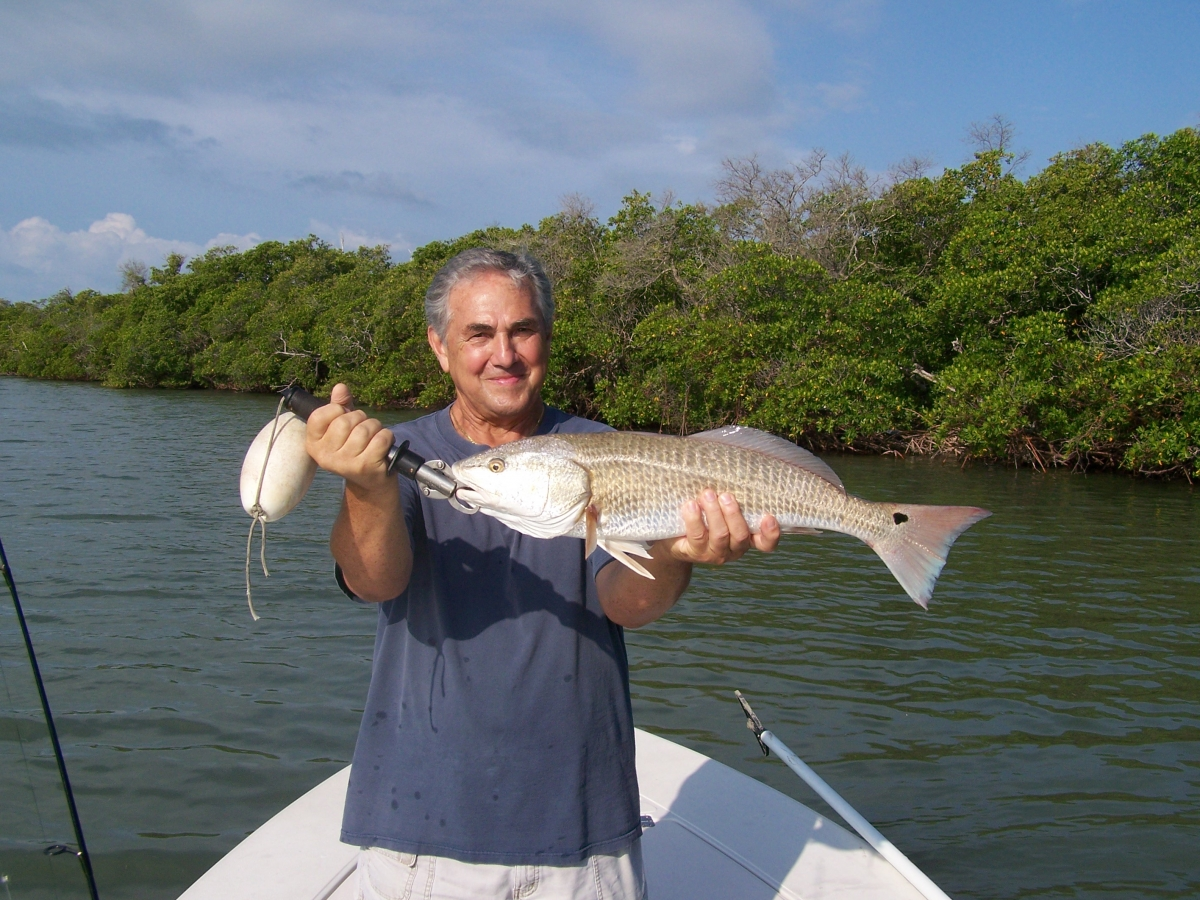 Naples Redfish