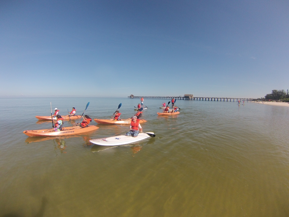Naples paddleboard, stand up paddleboard and kayak adventure tours