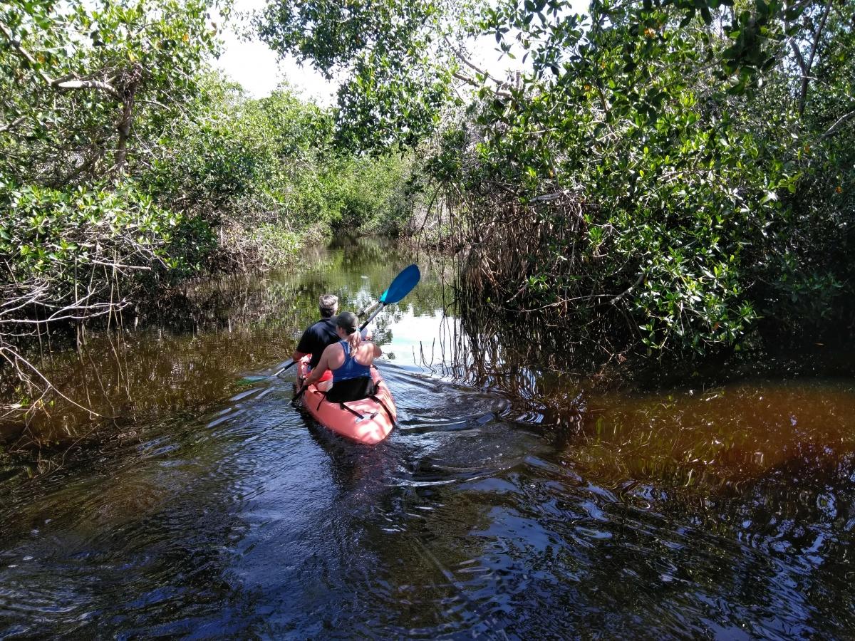 green way gordon river