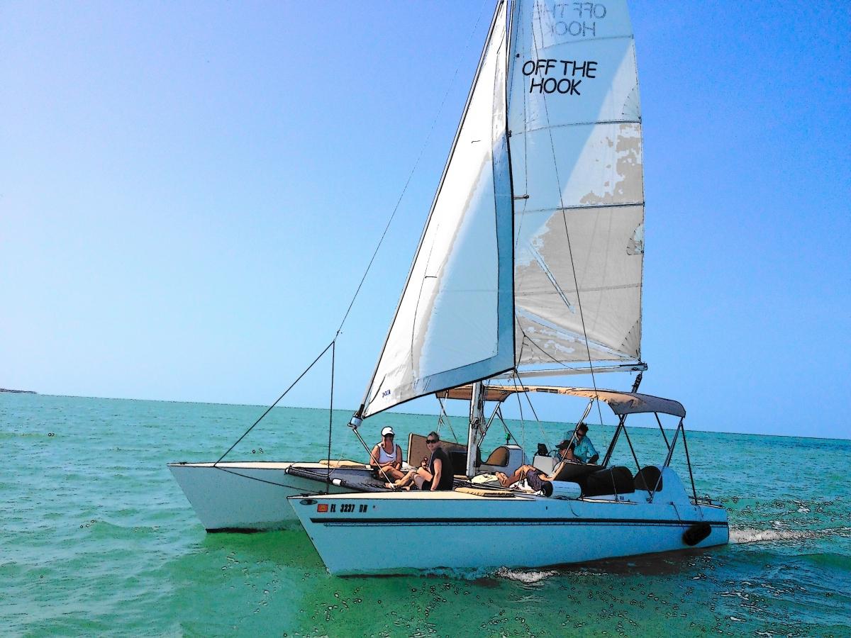 sail marco Island dolphin tour