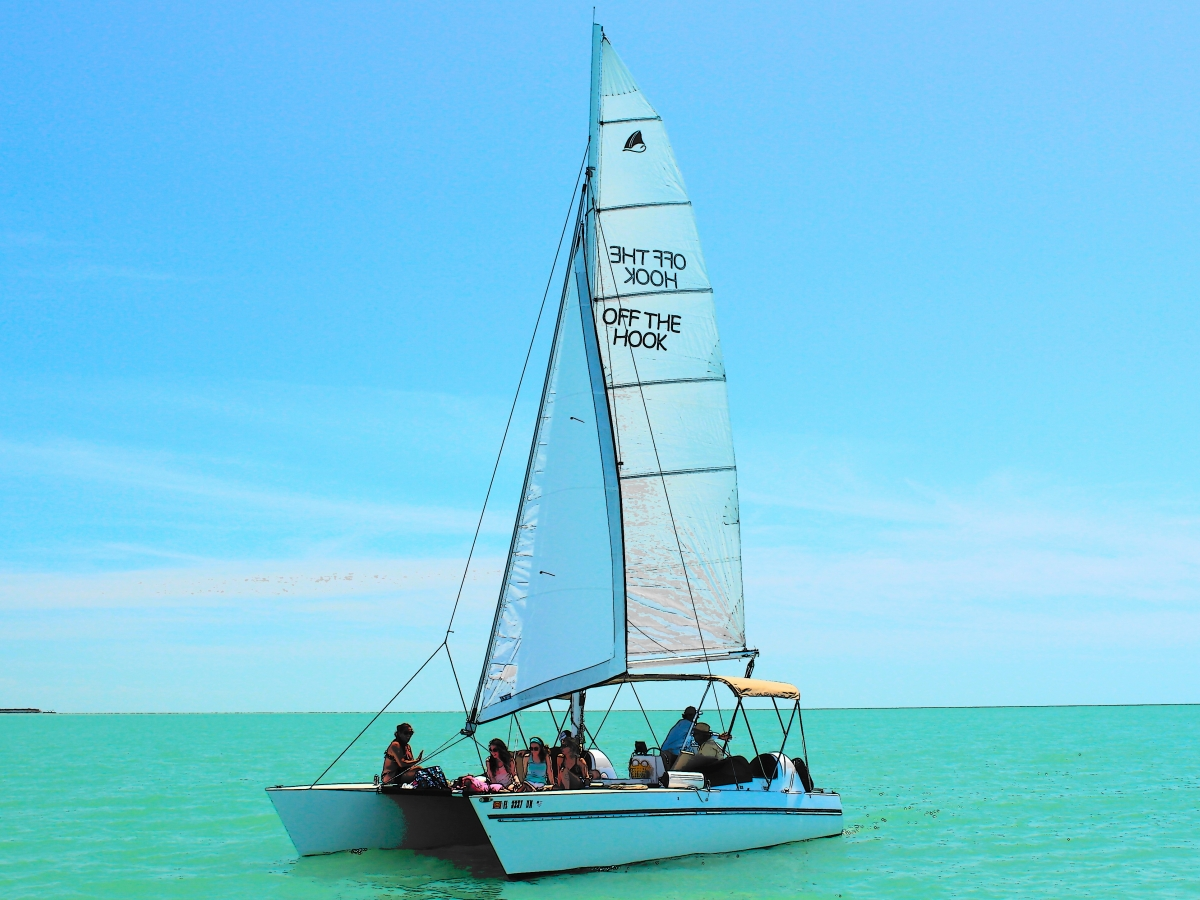 marco island boat tour
