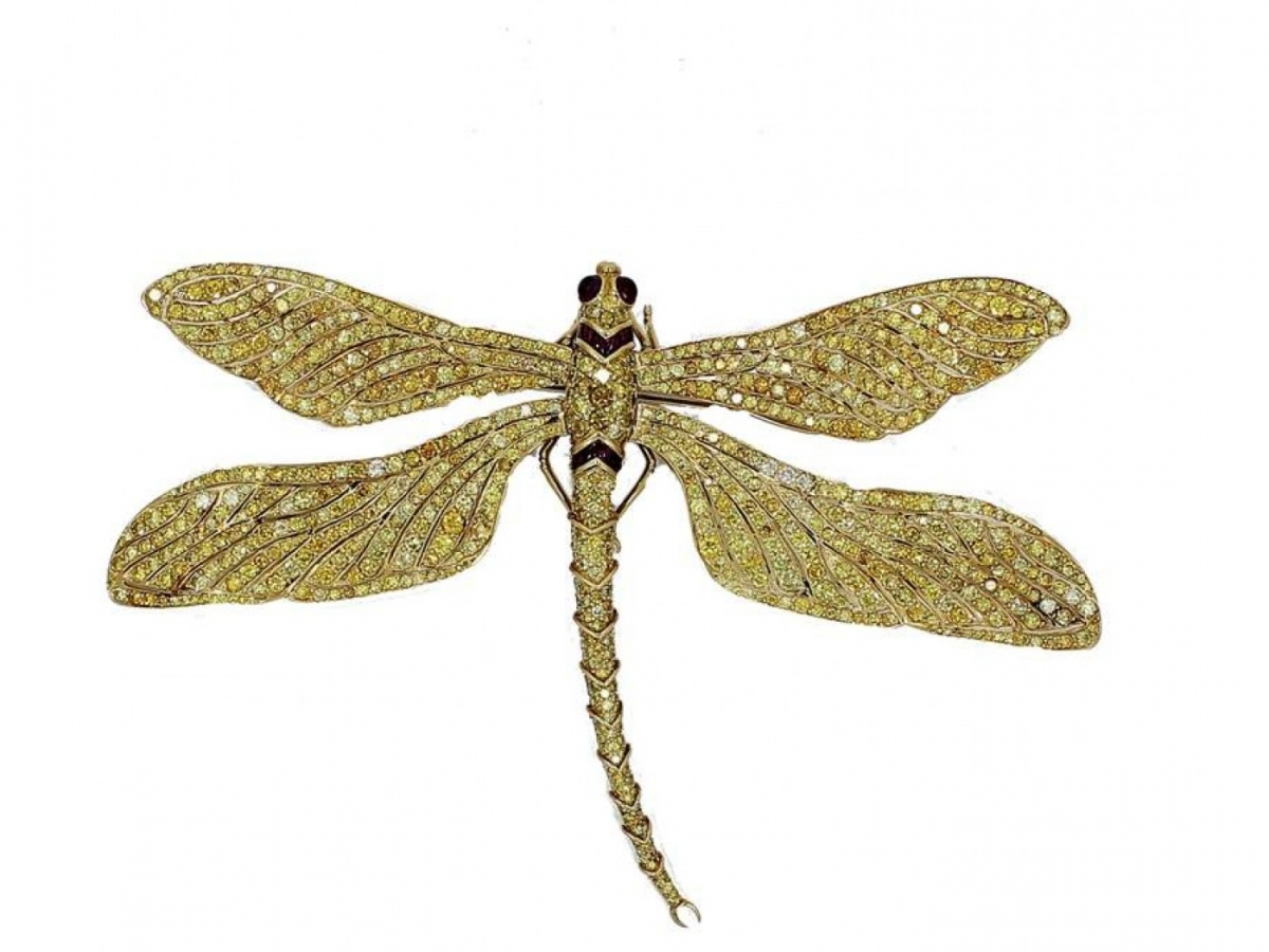 Provident Jewelry | Naples, Marco Island & Everglades