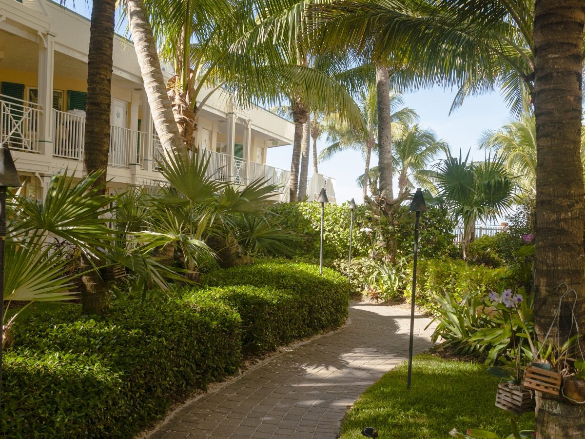 Lush, tropical orchid garden leads directly to Vanderbilt Beach