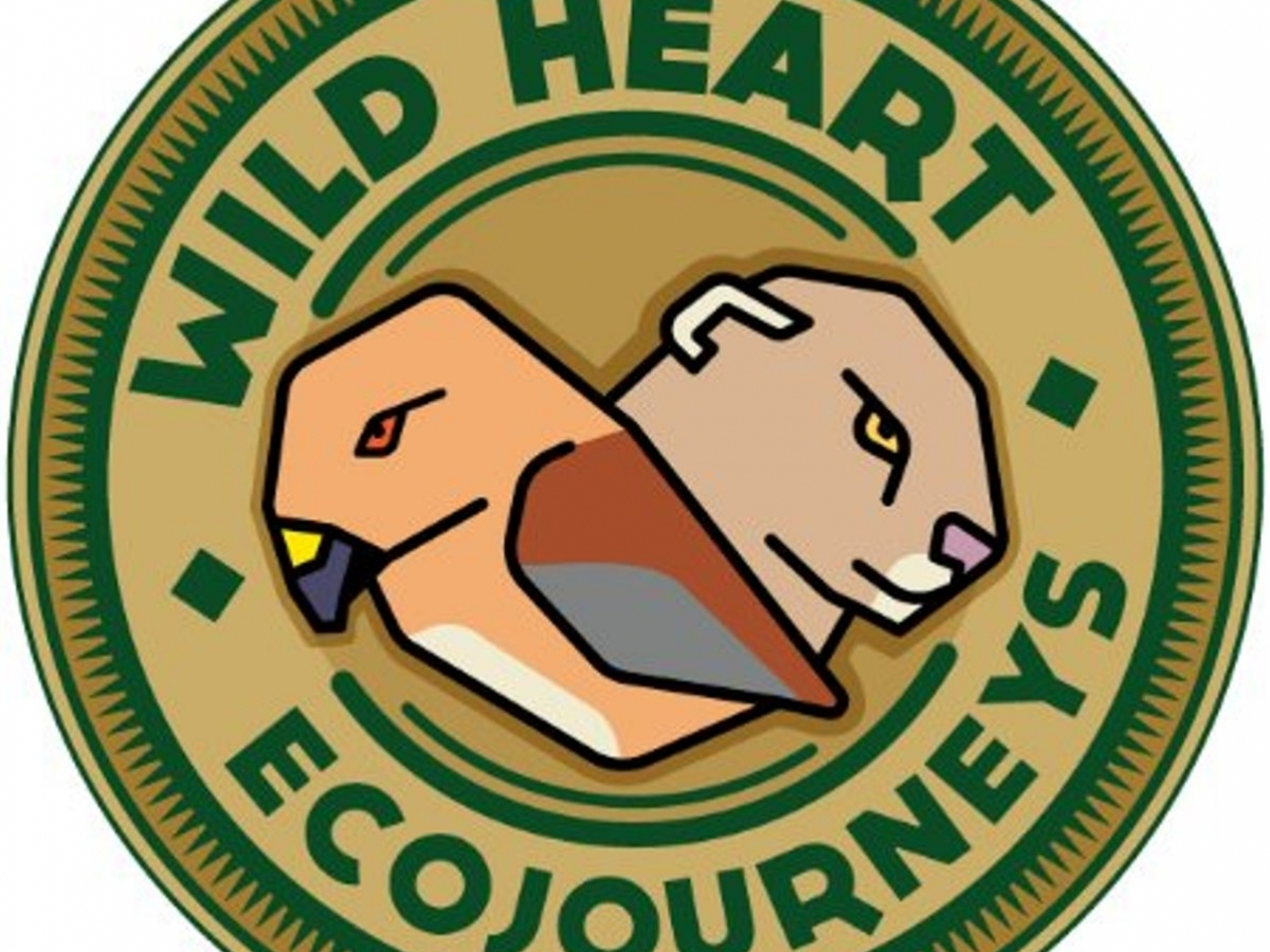 Wild Heart Ecojourneys provide education on wildlife and nature in Naples, FL
