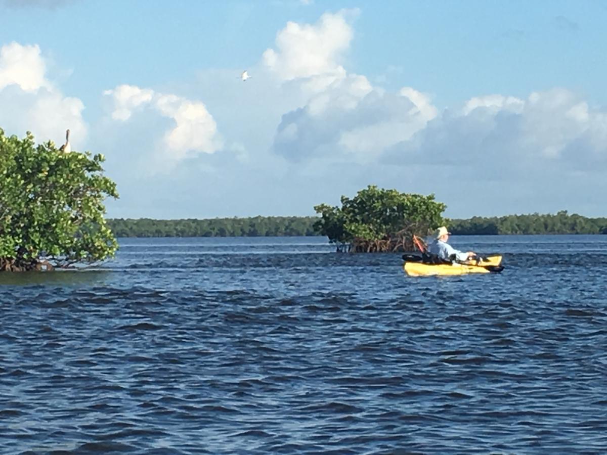 Kayaking around one of 10,000 mangrove islands!
