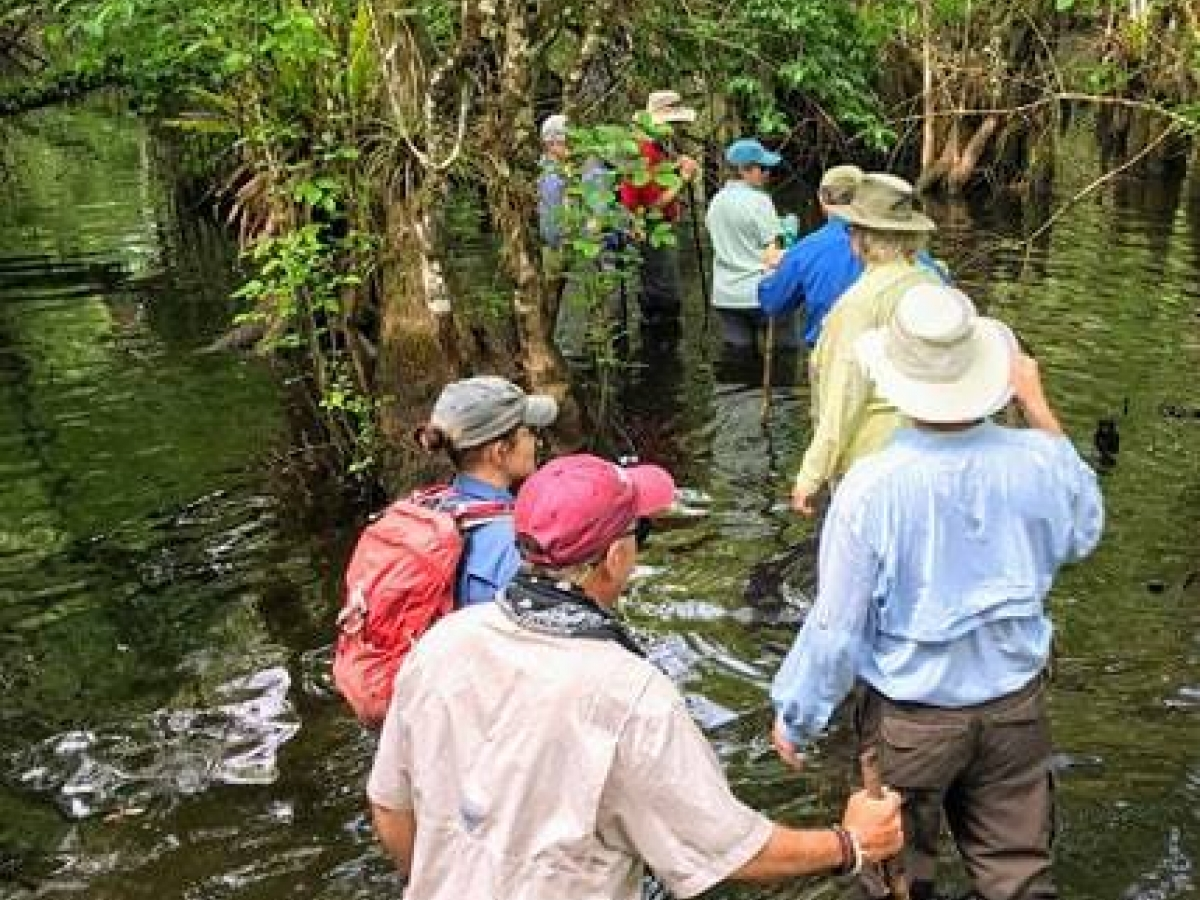 Orchid Wet Walks are just one of many fun, free activities offered!