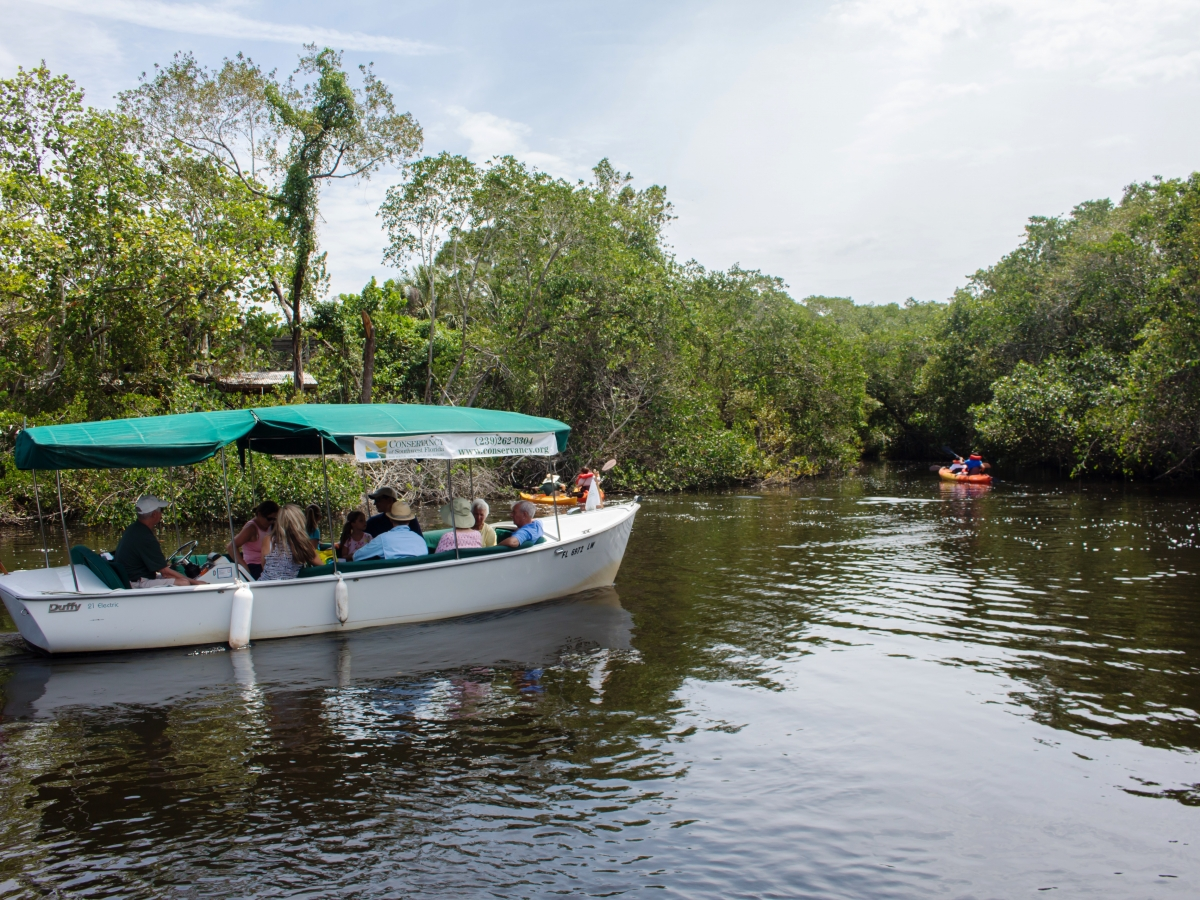 The Conservancy's electric boat tours are a guest favorite!
