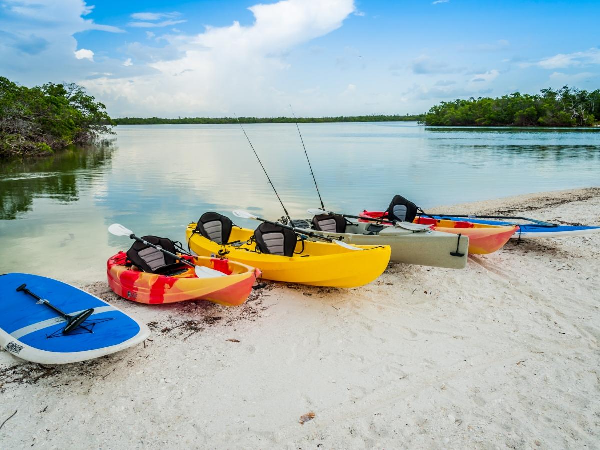 Paddleboard and Kayak Rentals
