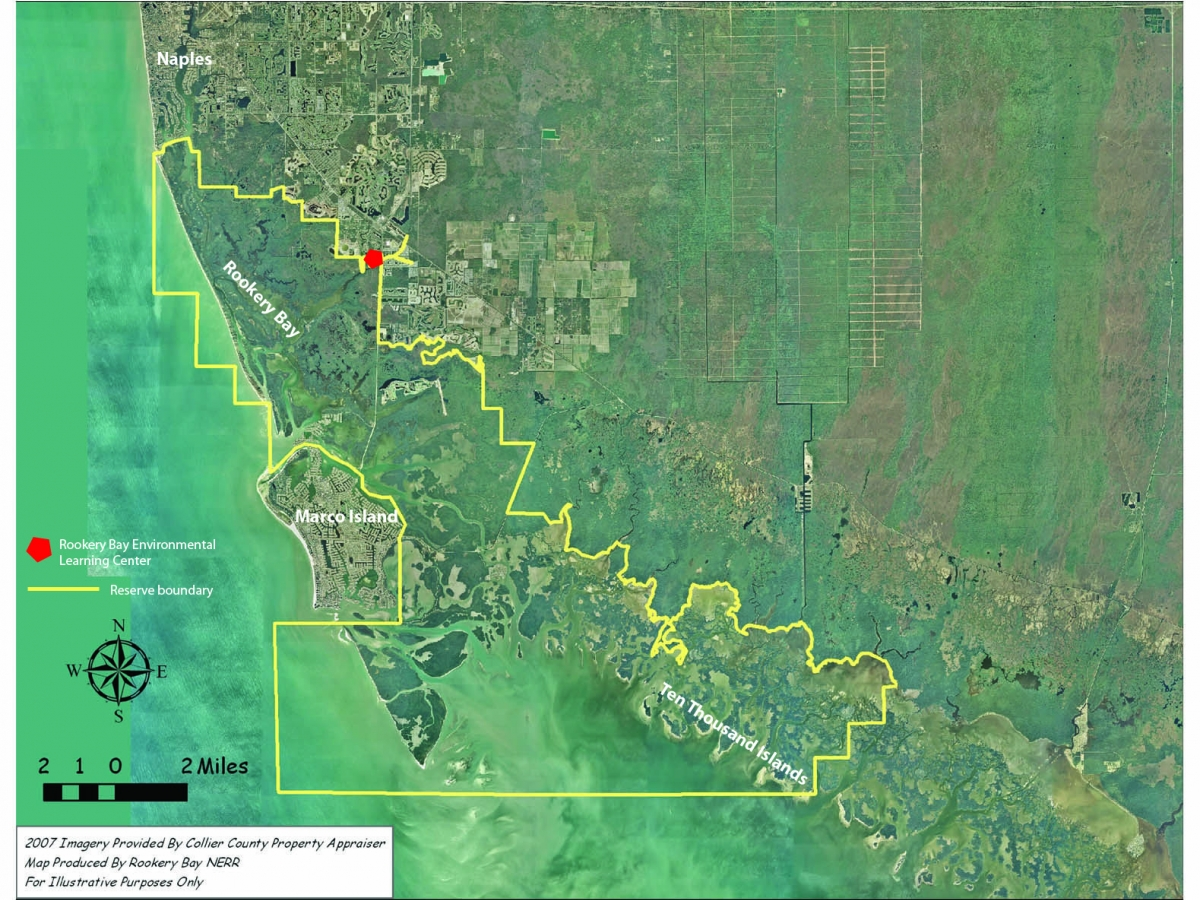 The Rookery Bay National Estuarine Research Reserve encompasses 110,000 acres on the western edge of the Everglades.