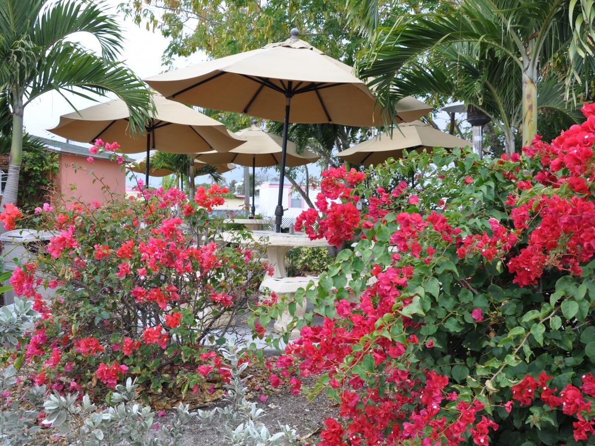 Garden patio seating