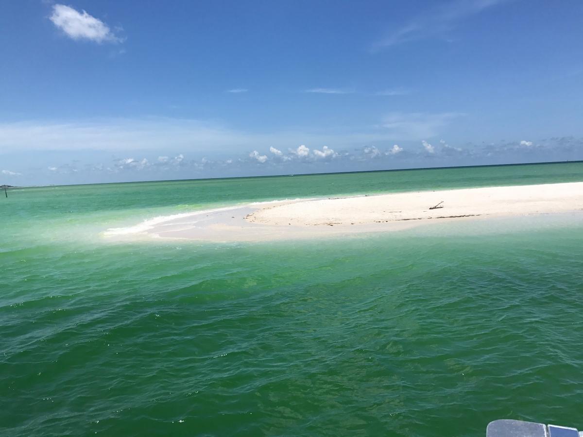 Visit Keewaydin Island On Hemingway Water Shuttle