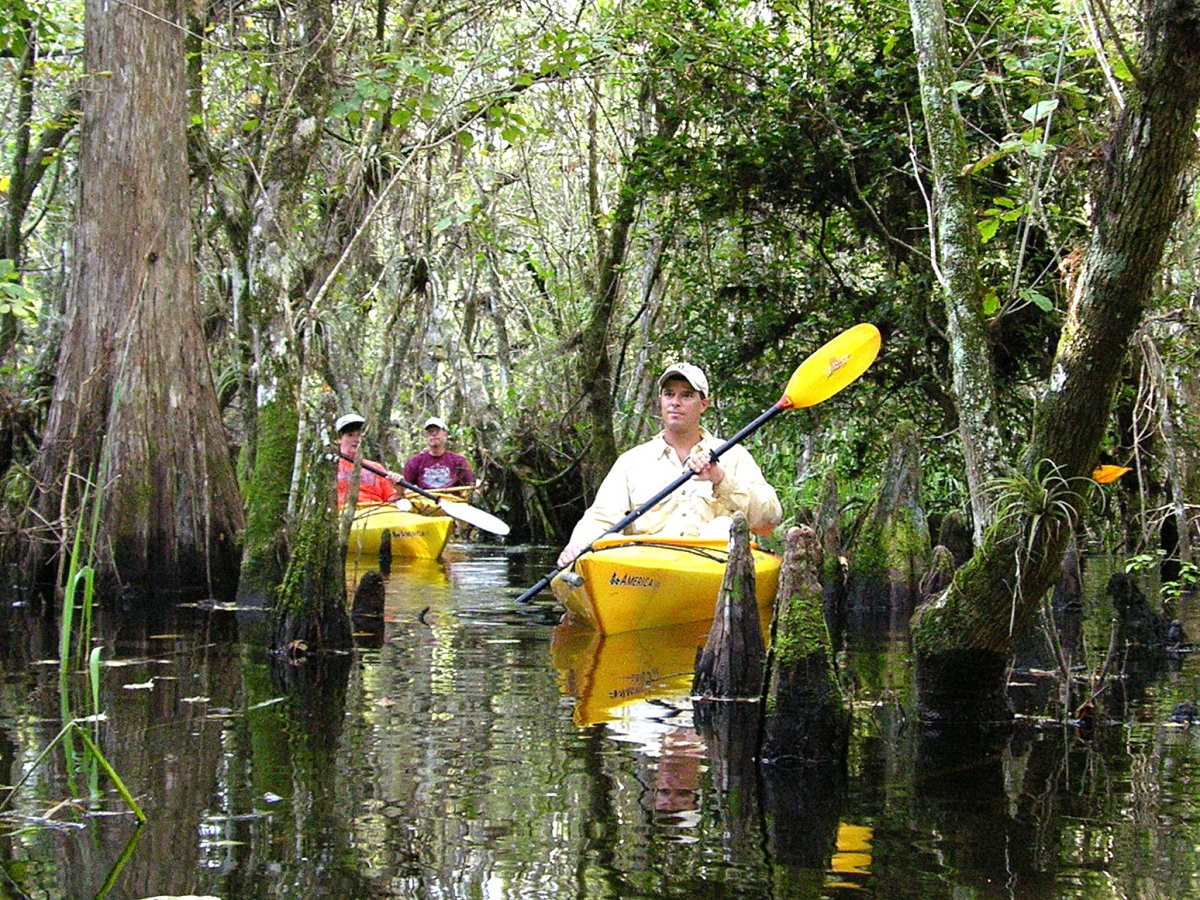 Stay and Explore the Everglades at the Ivey House